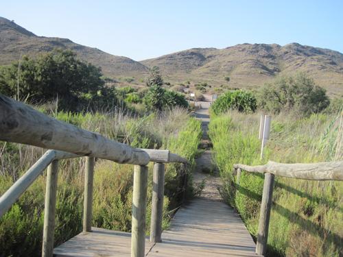 Rutas de Tierra y Mar - Rutas de senderismo y observación de la naturaleza en la Región de Murcia