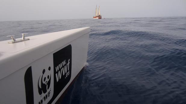 Rutas de Tierra y Mar - Senderismo, observación de cetáceos, turismo activo en la Bahía de Mazarrón (Murcia)