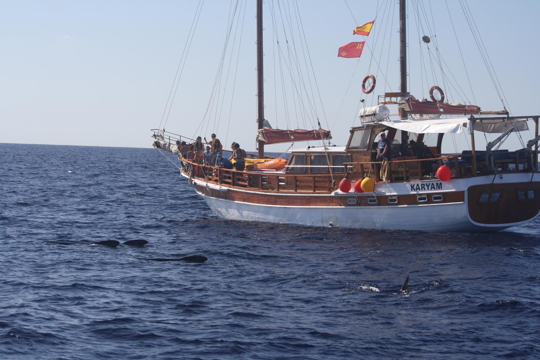 Rutas de Tierra y Mar - Vida a bordo del Karyam