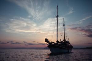 goleta de avistamiento de cetaceos