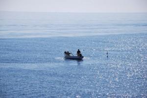 pesca moruna